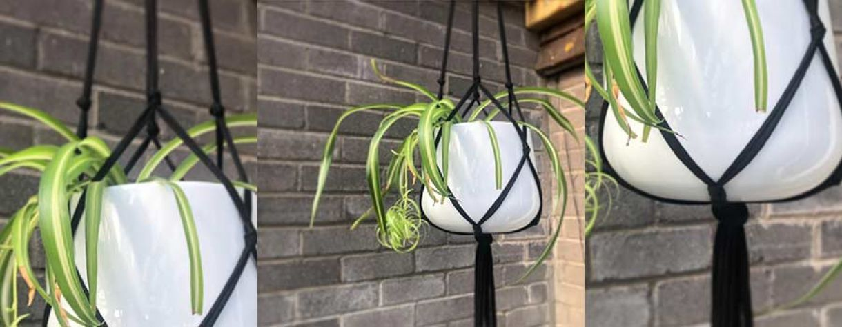 How to Make a Hanging Planter image