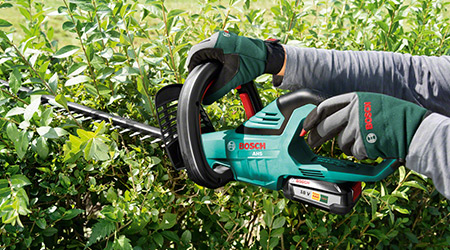 Hands holding a Bosch hedge trimmer against some hedge